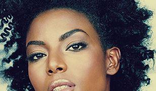 Za darmo: Przegląd filmowy Afro-Ameryka