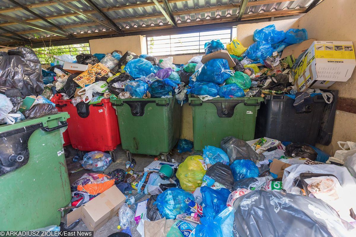 """Aktywiści żądają wyjaśnień ws. wywozu śmieci na Mokotowie. """"Władze po cichu wymieniają prezesa MPO"""""""