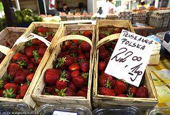 Zastanów się dwa razy, zanim zjesz truskawki. Ulubione owoce Polaków są nafaszerowane chemią