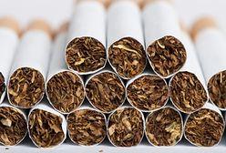 Pomysły Brukseli godzą w nasz przemysł tytoniowy