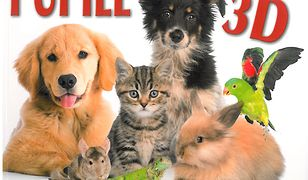 Świat zwierząt. Pupile w 3D
