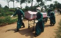 Wirus ebola. Analiza danych pacjentów z Sierra Leone wyjaśni epidemię?