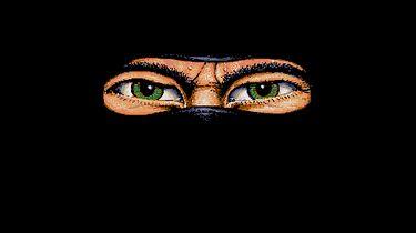Legenda ostatniego Ninja