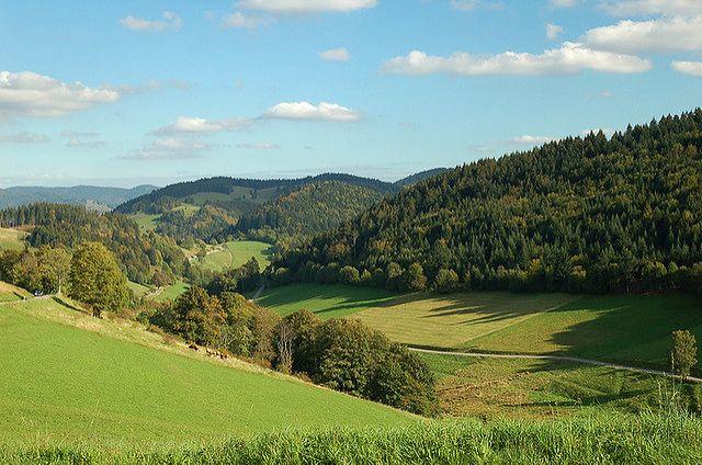 Schwatrzwald jest jedną z największych atrakcji Badenii-Wirtemergii