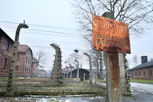 Irlandzki turysta zbezcześcił pomnik w Auschwitz