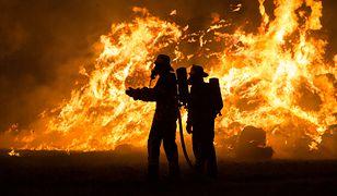 Pożar wybuchł przed północą