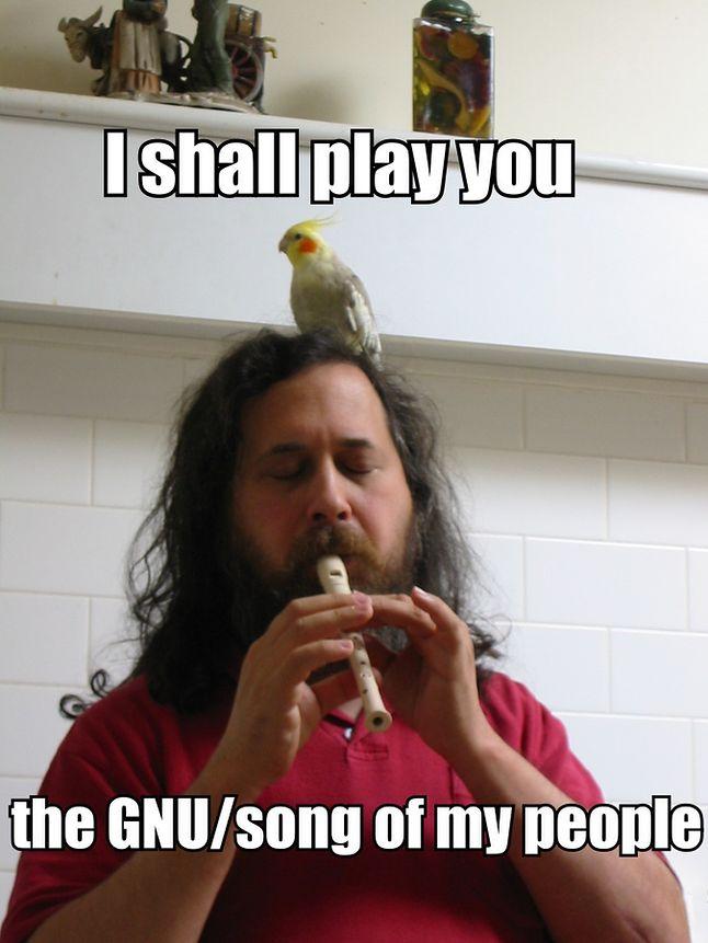 Na zdjęciu Stallman gra koncert na afrykańskim flecie, a przysłuchuje się temu występowi jedna z jego nimf. Warto dodać, że jest od wielu lat wielbicielem tej rasy papug.