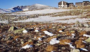 Norwegia: nowe schronisko pod szczytem