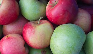Jabłka to jedne z najpopularniejszych owoców w Polsce