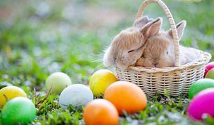 Wielkanoc 2019 - wierszyki i tradycyjne życzenia wielkanocne.