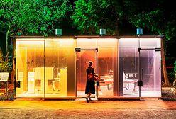 Wakacje 2020. Przeźroczyste toalety. Nowa nietypowa atrakcja w Tokio