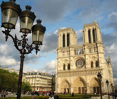 Katedra Notre Dame. Historia symbolu kultury Francji