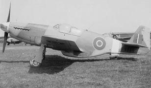 Polski myśliwiec z Dywizjonu 306 na sprzedaż