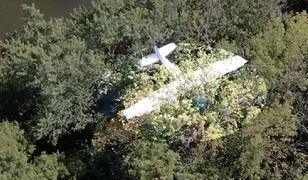 Samolot Cessna 172 rozbił się na drzewie w USA
