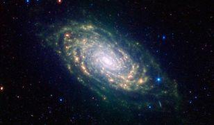 NASA znalazło dowody na istnienie życia w kosmosie
