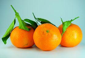 Witaminy, które korzystnie wpływają na odporność organizmu. Poznaj je