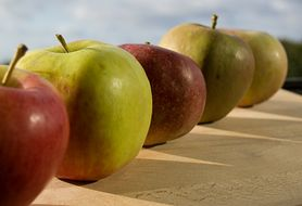 Dieta jabłkowa - schudnij i oczyść swój organizm