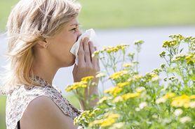 Alergii powiedz STOP - zwróć uwagę na swój dom