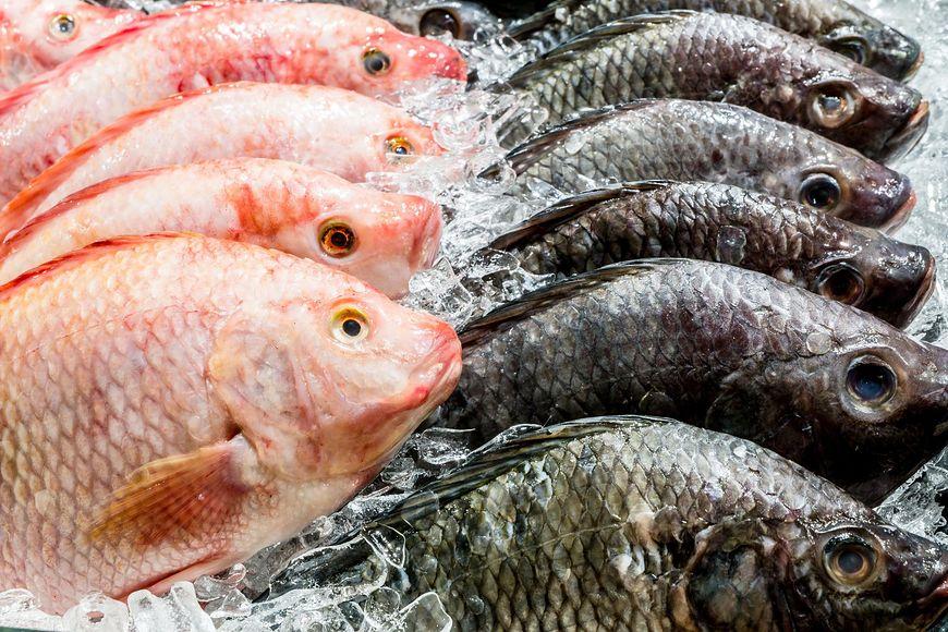 123rf.com Warto wzbogacić dietę o chude ryby
