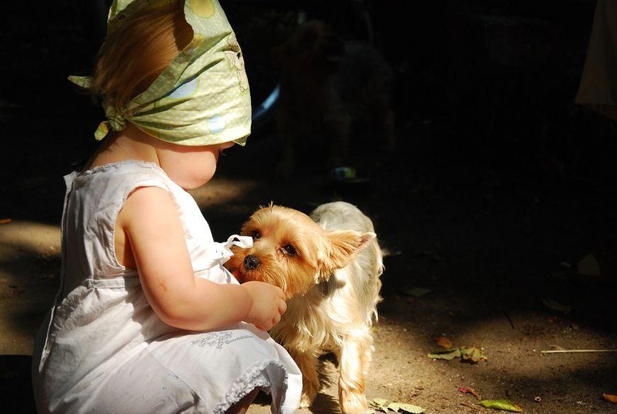 Szczeniak i dziecko