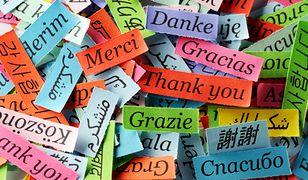 Dobrym celem na początku jest jak najszybsze przyswojenie 500 najpopularniejszych słów oraz trzech podstawowych czasów.