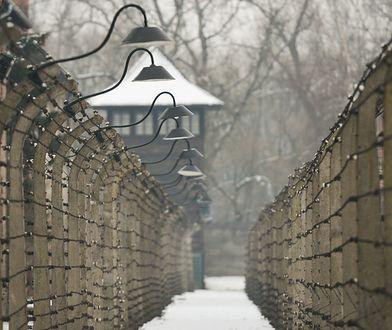 Pierwsza kobieta, która uciekła z Auschwitz. Najgorsze było spotkanie z Mengele
