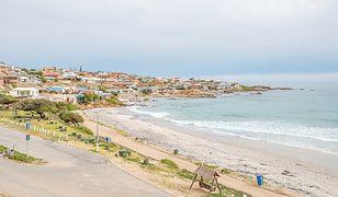 RPA: na plaży znaleziono kilkadziesiąt rekinów bez głów