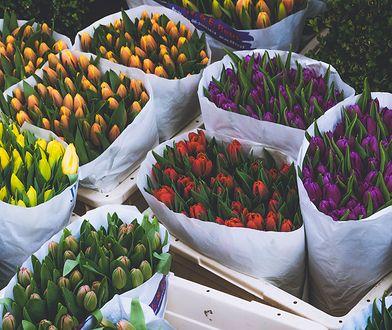 Kwiaty to najpopularniejszy prezent na Dzień Matki