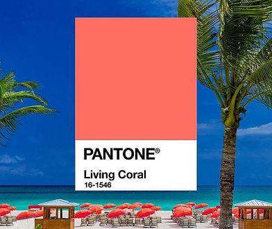 "Kolorem roku Pantone jest ""Living Coral"""