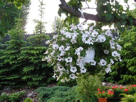 Aby ogród był piękny i praktyczny