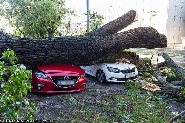 Ubezpieczyciele mogą nie wypłacić pieniędzy powołując się na zbyt mocny wiatr