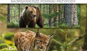 Zwierzęta wokół nas