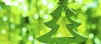 Świąteczna aktywność - komentarz posesyjny