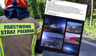 Zderzenie pojazdu z łosiem na autostradzie A1 w Łódzkiem. Nie żyje 34-latek