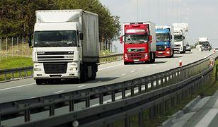 Kierowcy znajdują się w czołówce najlepiej opłacanych grup zawodowych.