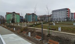 Krakowski park Reduta. Postawiono na nim 135 kosze na śmieci za łączną kwotę prawie pół mln. zł.
