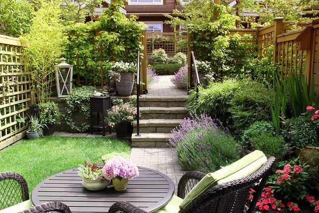 Ogród na długiej, wąskiej działce. Jak go urządzić?