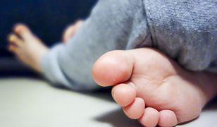 Wielkopolska. 30-latka z zarzutem zabójstwa noworodka
