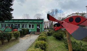 Sosnowiec. W przedszkolach deszczówka zadba o zieleń