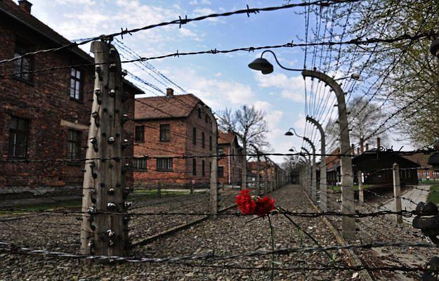 """Zdaniem protestujących obozy koncentracyjne powstały na terenie Polski, ponieważ """"Polacy się na to godzili"""""""