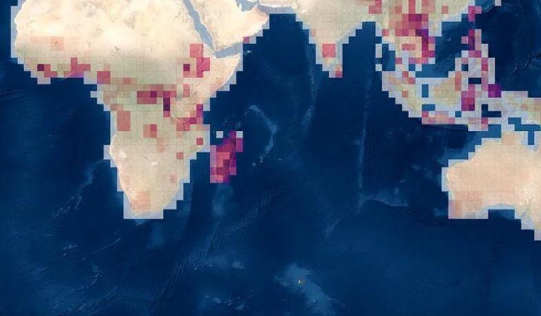 Tyle zostało ich na Ziemi. Naukowcy opracowali niesamowitą mapę