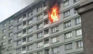 Warszawa. Policja zbiera materiał dowodowy w mieszkaniu na Woli, gdzie środę doszło do pożaru