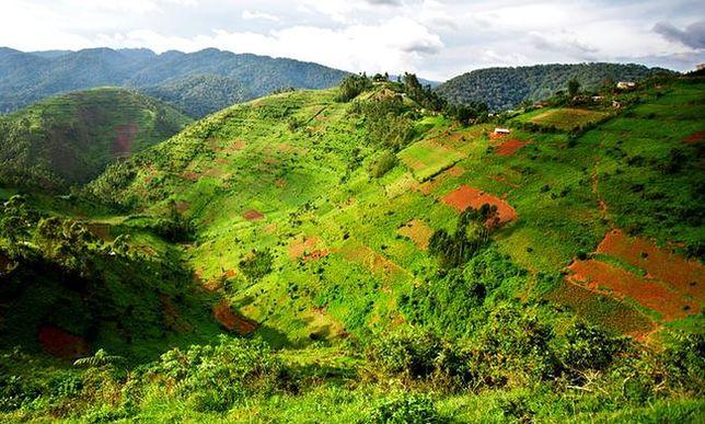Idealne miejsce na zimowe podróże - Uganda