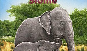 Słonie. Pixi Ja wiem!