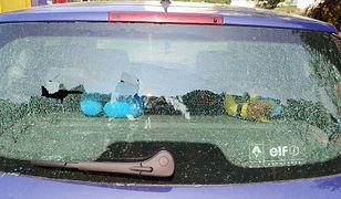 Nieznany sprawca ostrzelał zaparkowany samochód śrutem