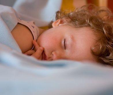 Rozczesywanie dziecka rano może być koszmarem