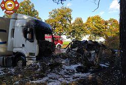 Tragiczny finał pościgu w Wielkopolsce. Ofiary będą identyfikowane dzięki DNA
