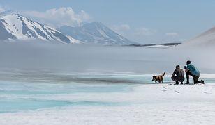 Zmiany klimatu mogą wywołać wzrost temperatury na Arktyce