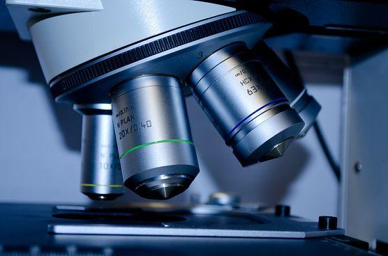 Czy wiesz, za co odpowiadają czynniki krzepnięcia i jak interpretować wyniki ich badania?