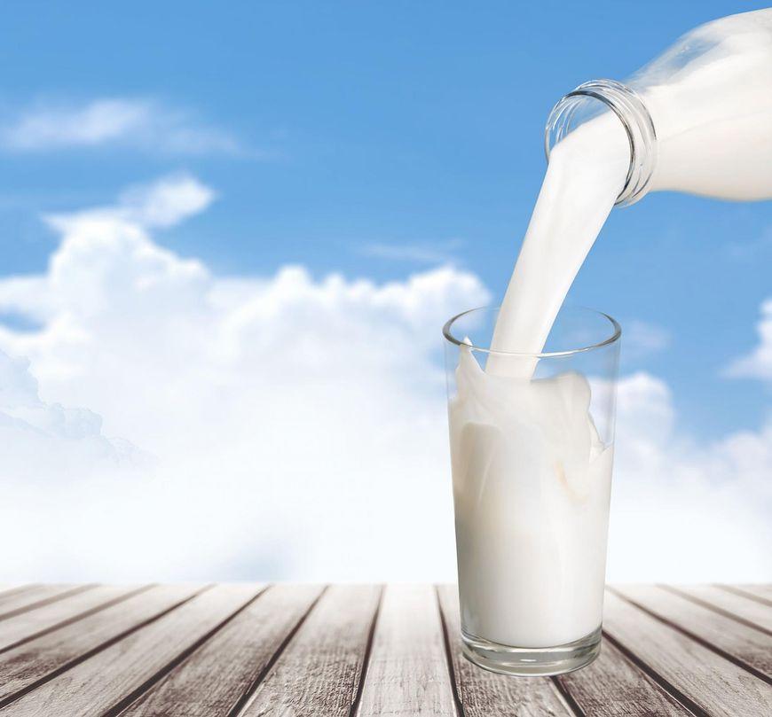 Najlepsze będzie mleko niepasteryzowane, ale należy pamiętać, że ma o 4-5% więcej tłuszczu, niż to ze sklepu